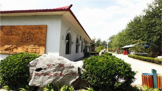 Liuminying Ecological Farm