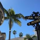 The Best of LA, Hollywood, Beverly Hills and Beaches from Anaheim and LA