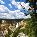 Private Tour of Yellowstone! Gourmet picnic lunch included. $1400 per group