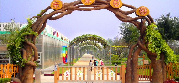 Taishan Colorful Time Scenic-Spot2