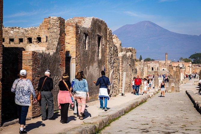Pompeii Round-Trip Bus from Rome & Skip the Line Ticket