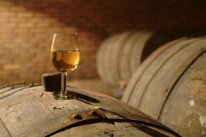 Wine Tasting Tour to Wine Making Region