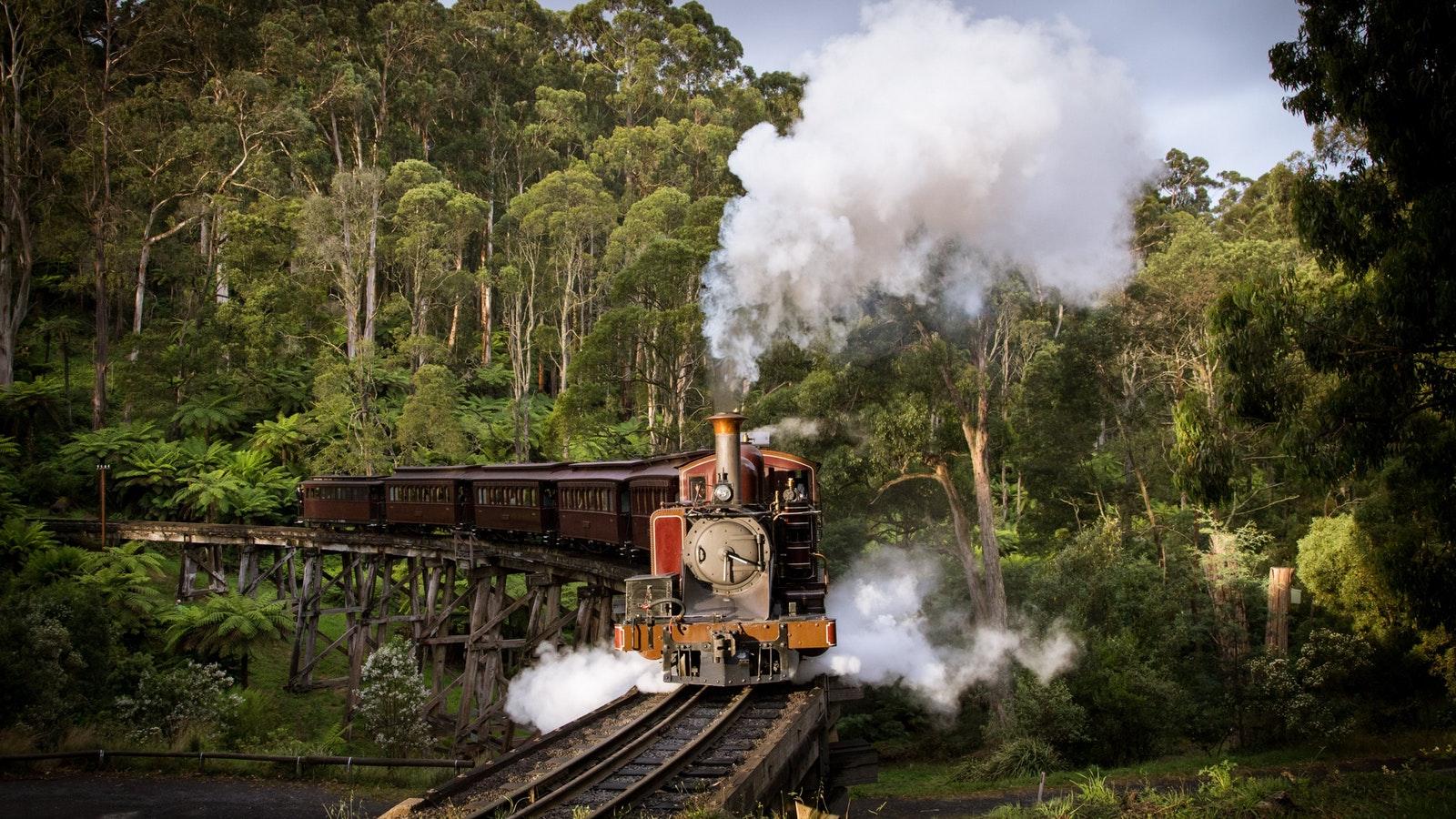 墨爾本玩趣蒸汽小火車+動物星球+薩沙弗拉斯小鎮+考拉動物園+企鵝歸巢一日游(菲利普島企鵝島中文包車司導)