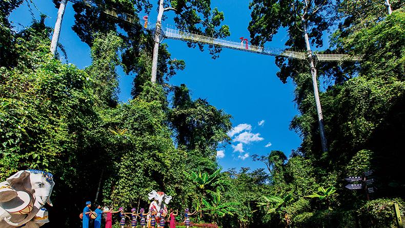 西雙版納熱帶雨林國家公園望天樹景區一日遊(含水陸空套票+每人美味克木人簸箕飯)
