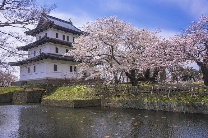 Hokkaido Cherry Blossoms: Goryokaku Park and Matsumae Park