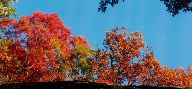 天池山風景區2