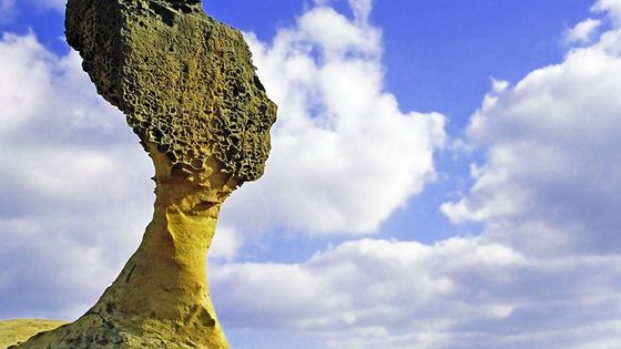 Private Charter from Taipei:Yehliu Geopark and Shifen (6 Hours)