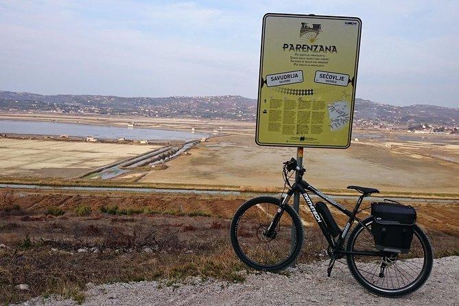 Parenzana Trail Biking Experience from Koper