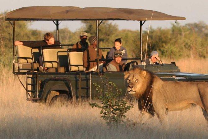 Cruise Shore Safari - Daytrip Selous Game Reserve
