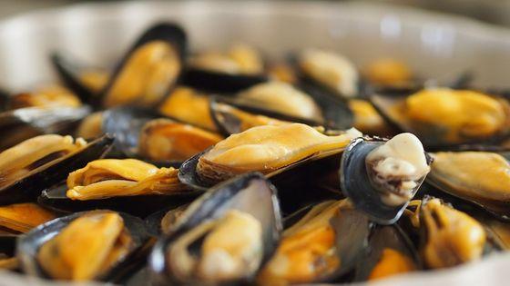 廣州本地體驗:當地海鮮市場採購+品嘗海味之旅