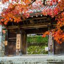 京都三千院+二條城+嵐山一日遊(大阪市內11區接送)