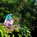 Kuala Lumpur Private Half-Day Family Tour of Nature, Birds and Butterflies