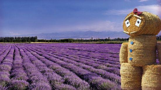 紫雲水岸香草園