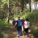 Opium Trail Trek Including Wat Phra That Doi Suthep and Hmong Village Tour