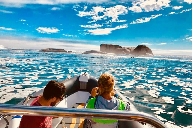 Hout Bay by Sea Boat Trip