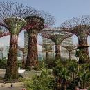 Gardens by the Bay & Satay