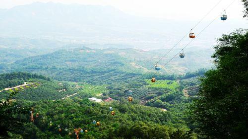 Qiannanyu Forest Park