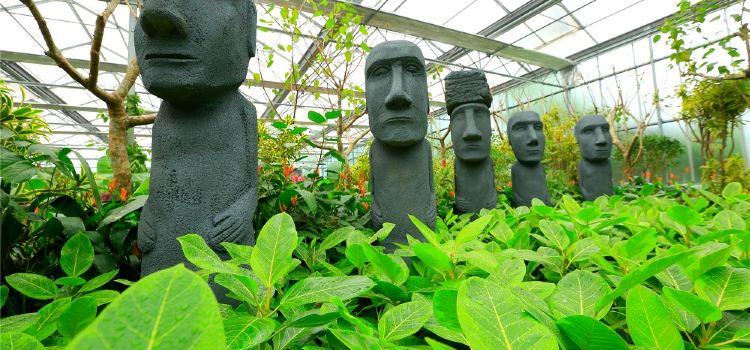 난궁 우저우 식물낙원2