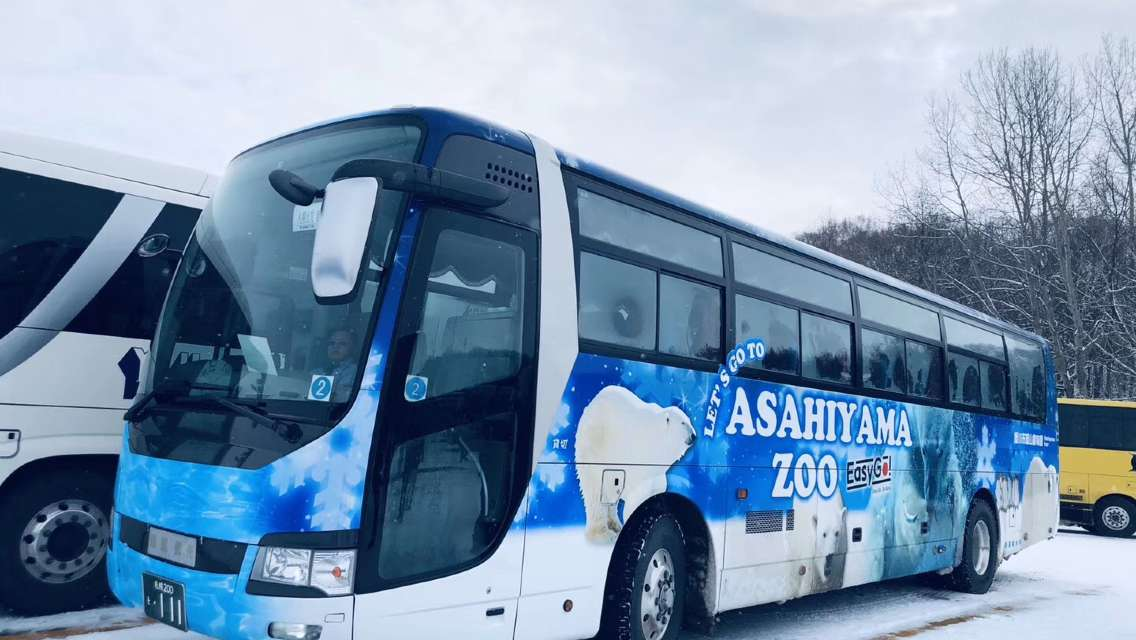 [English-speaking guide] Departing from Sapporo, Hokkaido Asahiyama Zoo + Ningle Terrace + Shirahige Waterfall Day Trip