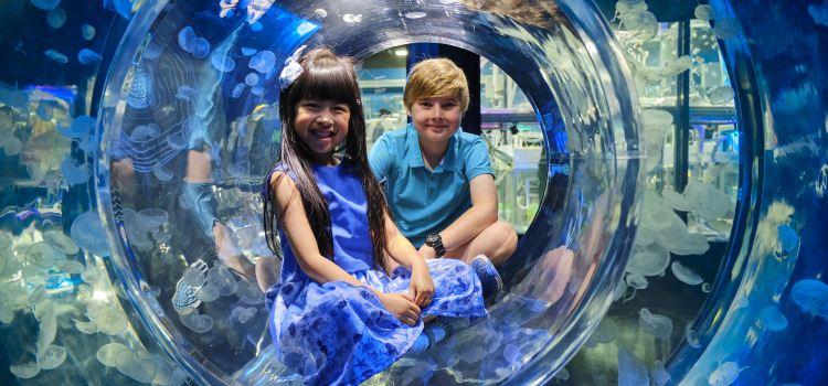 Melbourne Aquarium1