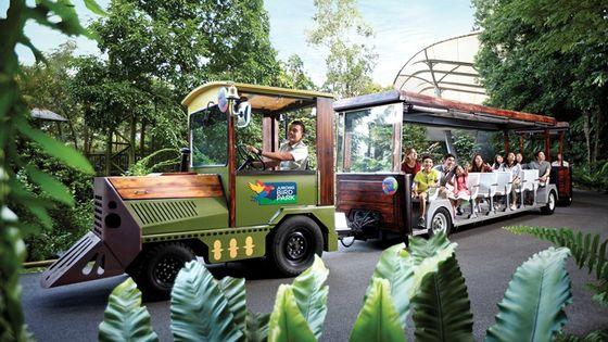 Jurong Bird Park Ticket + Tram Ride