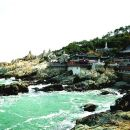 Private Full Day Tour of Busan Eastern Part Highlights