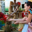 Fully Guided Jurong Bird Park Tour