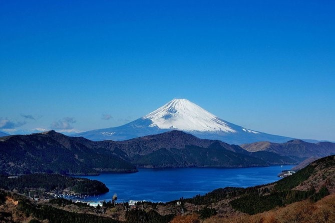 Private Full-Day Hakone Tour from Tokyo Including Owakudani Valley