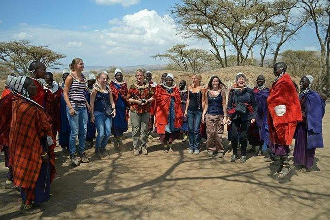 Mikumi National and Maasai village tour