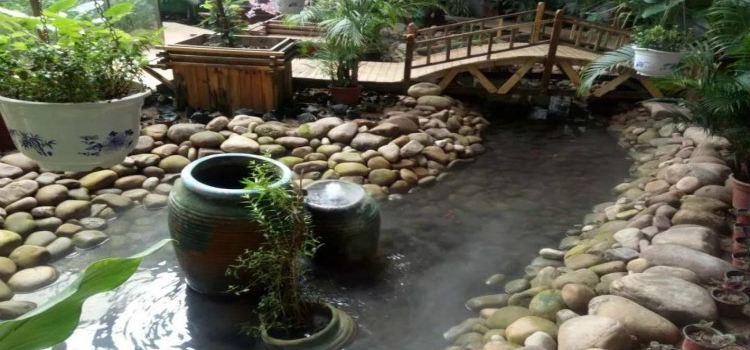 紫海芳庭熏衣草莊園2