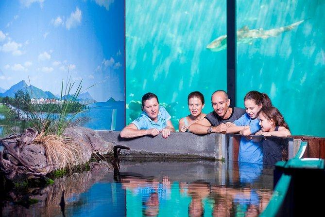 Reef HQ Great Barrier Reef Aquarium General Entry Ticket
