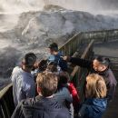 Rotorua Full Day Tour: Waitomo Caves, Te Puia and Agrodome from Auckland