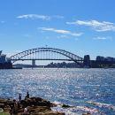 悉尼考斯特21座空調巴士包車一日游 - 中/英文司導(藍山,獵人谷,卧龍崗等)