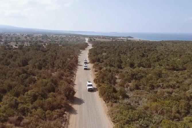 Safari Tour to Akamas Peninsula from Paphos