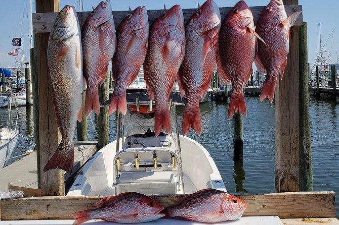 Half Day Fishing Charter