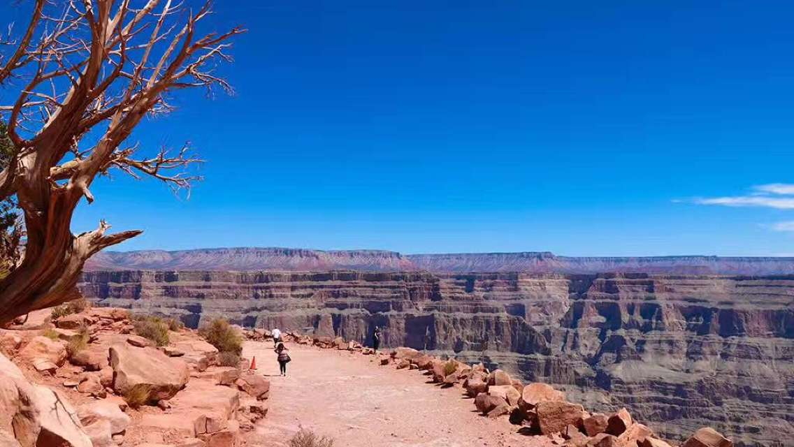 1 Day Grand Canyon West Bus Tour