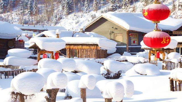 中国雪乡+亚布力新体委滑雪场+梦幻家园+冰雪画廊二日游【纯玩可选1-6人Mini小团含雪服+雪镜】