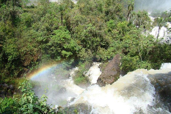 Iguazu Falls: Visit to Brazilian Side with Birds Park (Parque das Aves)
