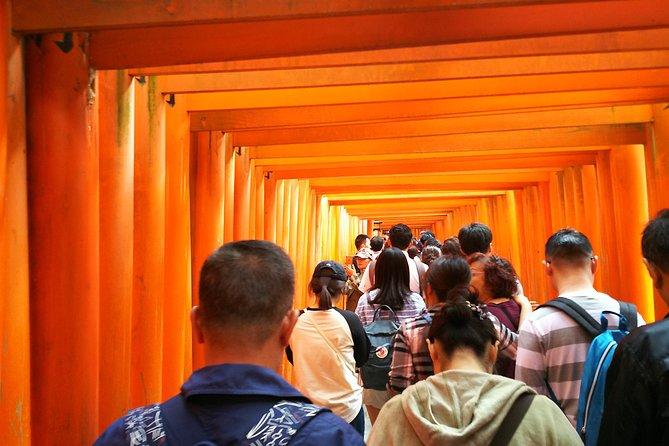 Kyoto Early Bird Wheelchair User Tour