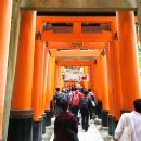 (Day Time) Fushimi Inari & Nara Highlights Tour