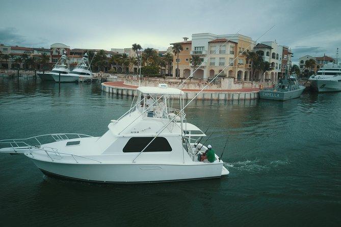 Bertram 33ft Fishing charter