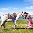 雲南+麗江+拉市海+束河古鎮一日遊(當天9點前均可下單 含1.5小時騎馬體驗)僅接受本省