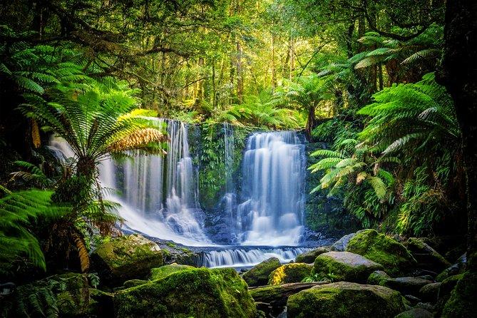 Mt. Field, Mt. Wellington, Bonorong Wildlife Sanctuary and Richmond Day Tour