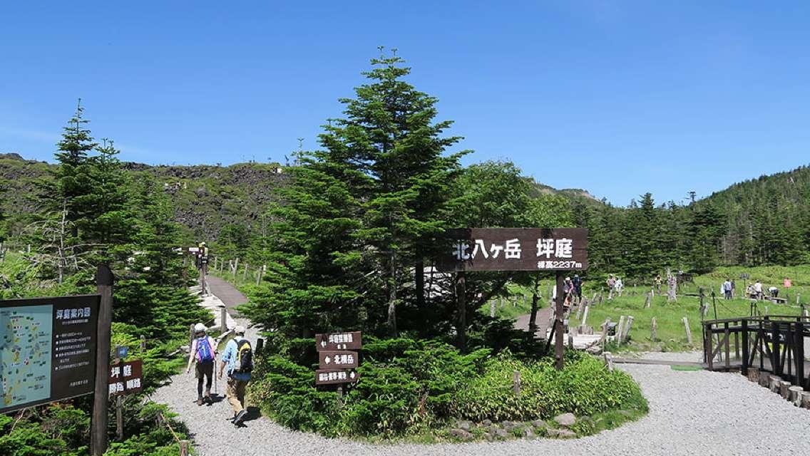 Trip.com 探索日本中部:酒店即減$400+行程/玩樂額外92折優惠碼:第8張圖片