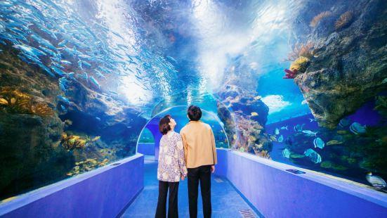 Liaocheng Underwater World
