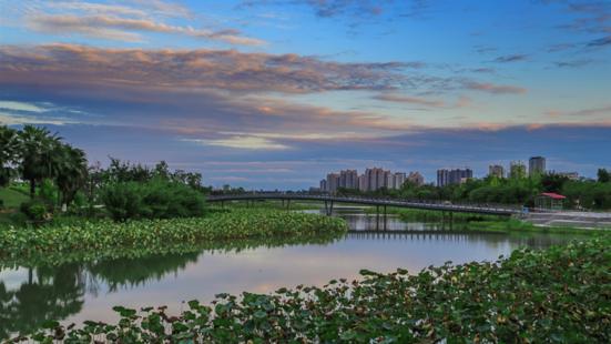 Shenglian Island Lotus Exposition Park