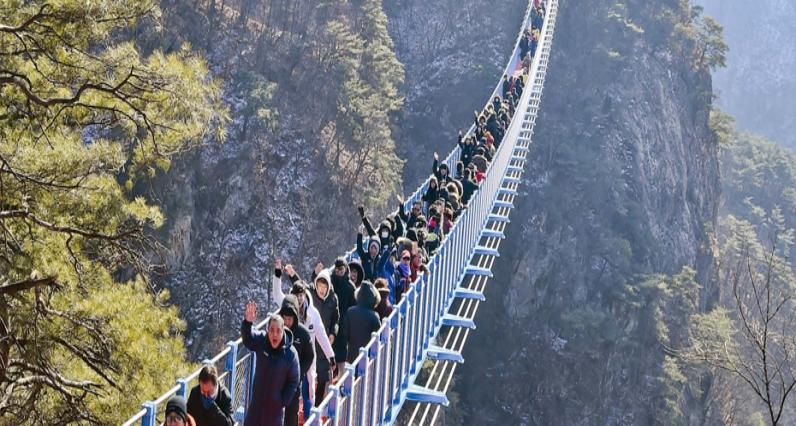 Gwangju Hwadam Botanic Garden + Wonju Suspension Bridge + Starlight Garden OOOZOOO One Day Tour