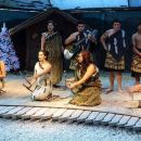 Willowbank Kiwi Tour and Maori Concert Including Hangi Dinner from Christchurch
