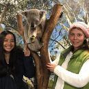 Australia Multi-City Attractions Pass