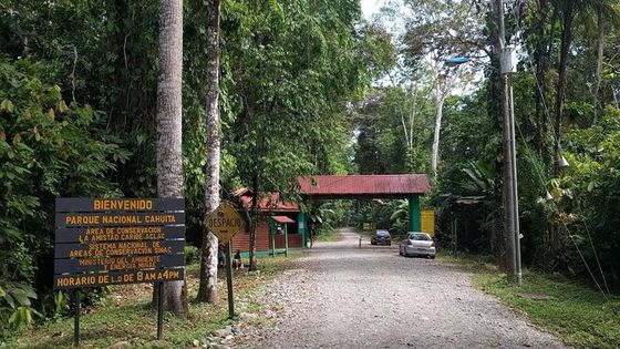 Cahuita National park on Vargas port, tortuguero canals and more!! 6 in 1 tour